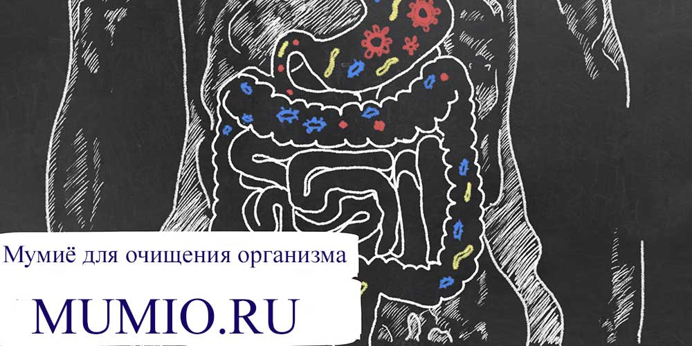 мумиё для организма